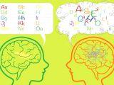 Disleksi, Dikkat Eksikliği, Oyun Terapisi (4-12 yaş), Okul Öncesi İngilizce Eğitimi